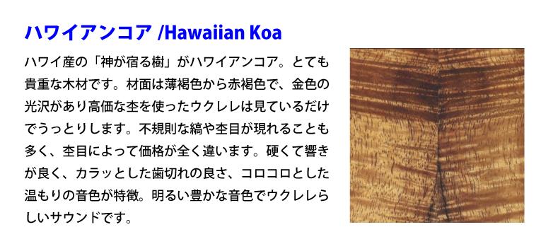 ハワイアンコア